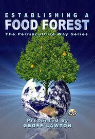 fbff_post-establishing_a_food_forest