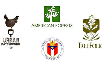 Giving Thanks!  To American Forests, Tree Folks, Urban Patchwork and the City of Austin
