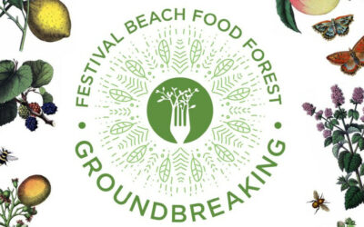 Tree Planting and Groundbreaking Picnic!