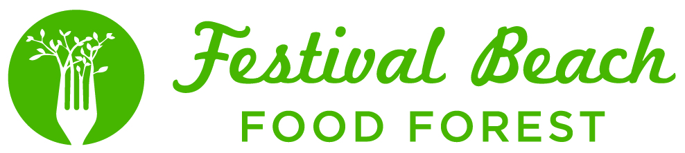festival-beach-food-forest