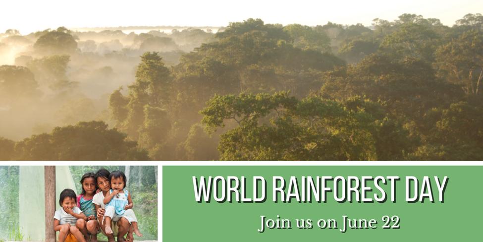world_rainforest