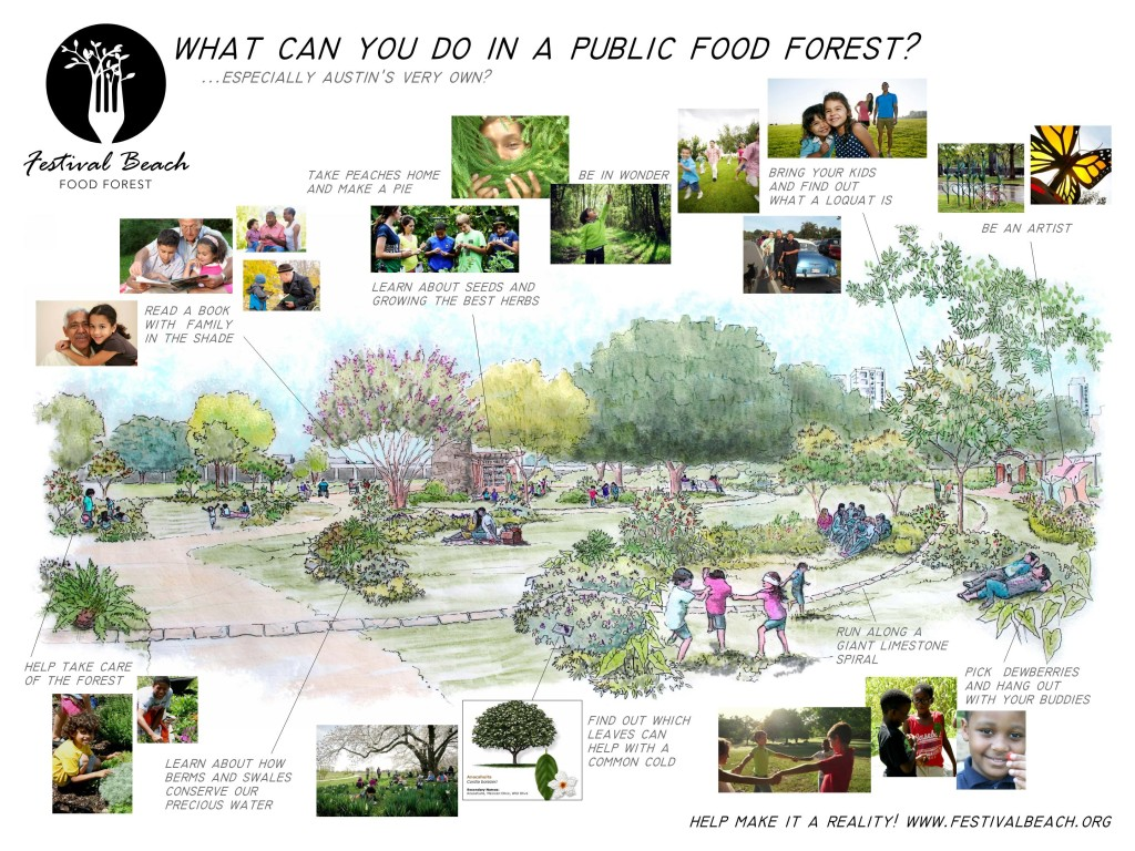 What you can do in a public food forest